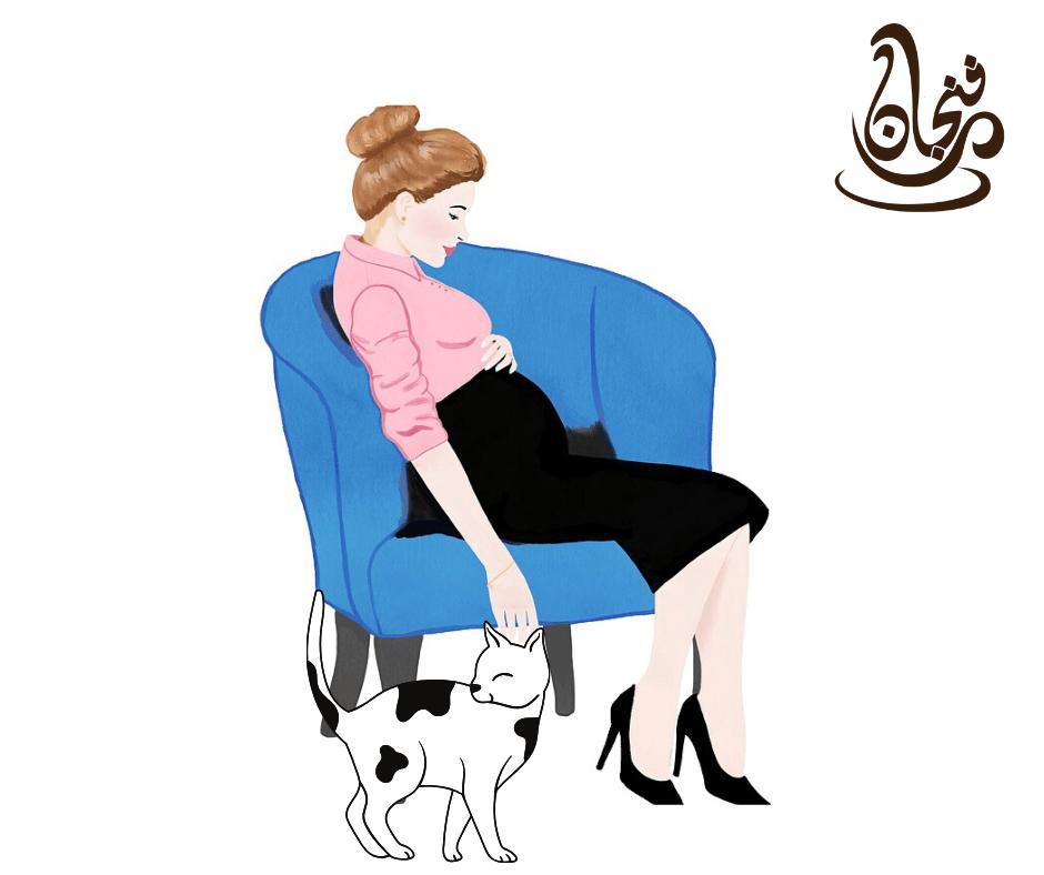 هل تؤثر القطط على الحامل؟