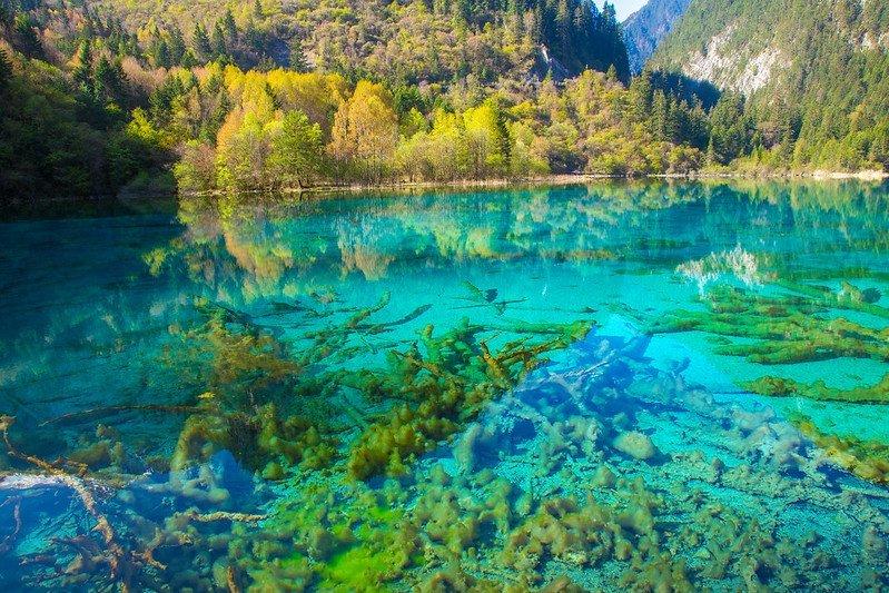أغرب البحيرات حول العالم