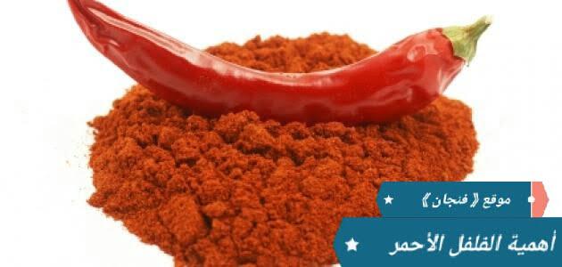 الفلفل الأحمر | وفوائده الرهيبة للجسم