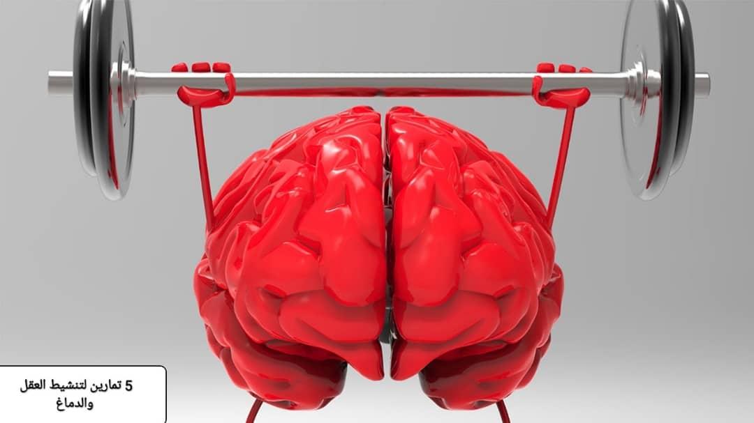 تمرين الدماغ