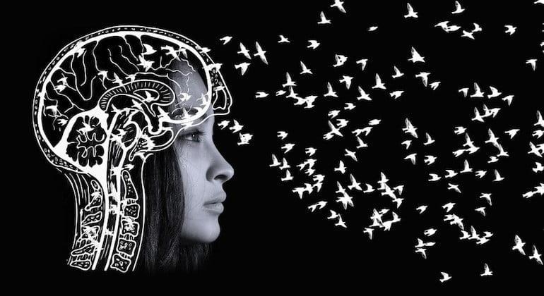 كيف تتشكل الذكريات