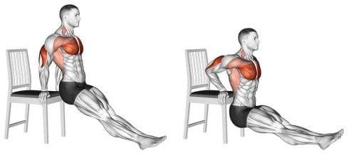 تمرين تراجع العضلة الثلاثية الرؤوس