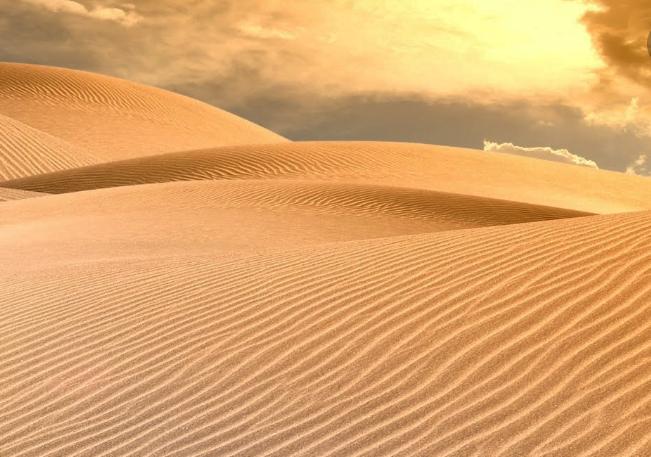 البيئة الصحراوية وخصائصها